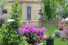 100520_Gartenfest_036.jpg
