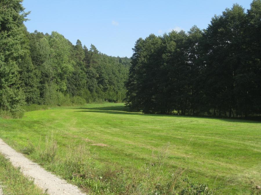 592-Naturschutzgebiet Michelsrombach
