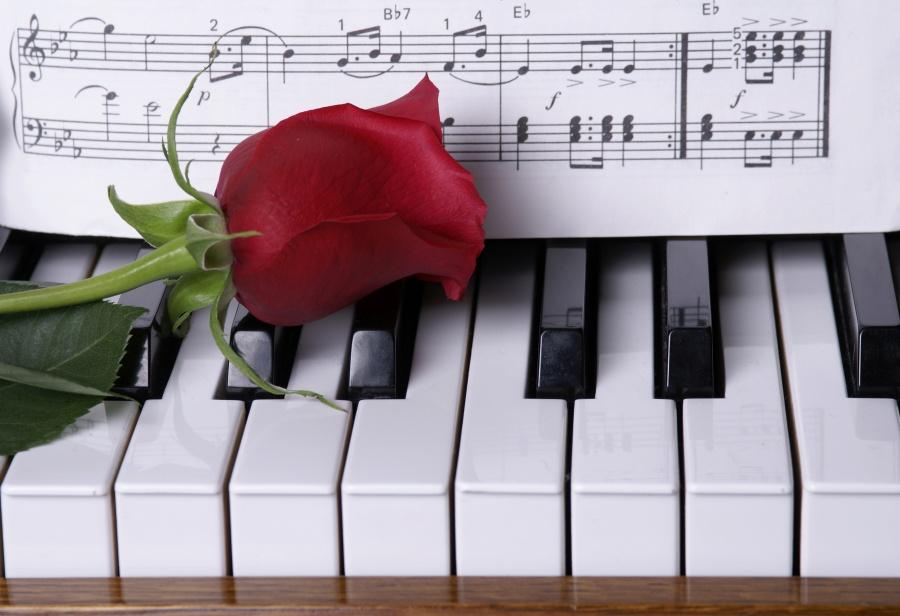 Kultur+Klavier+Rose+Noten_iStock_000006386333Large_klein