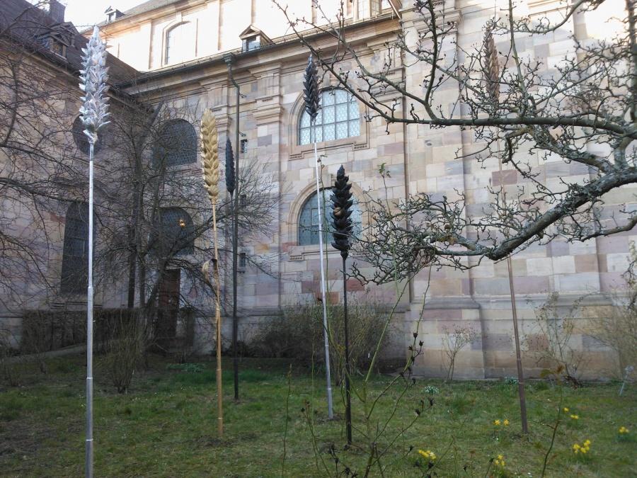 MW Ähren Dommuseumsgarten 2
