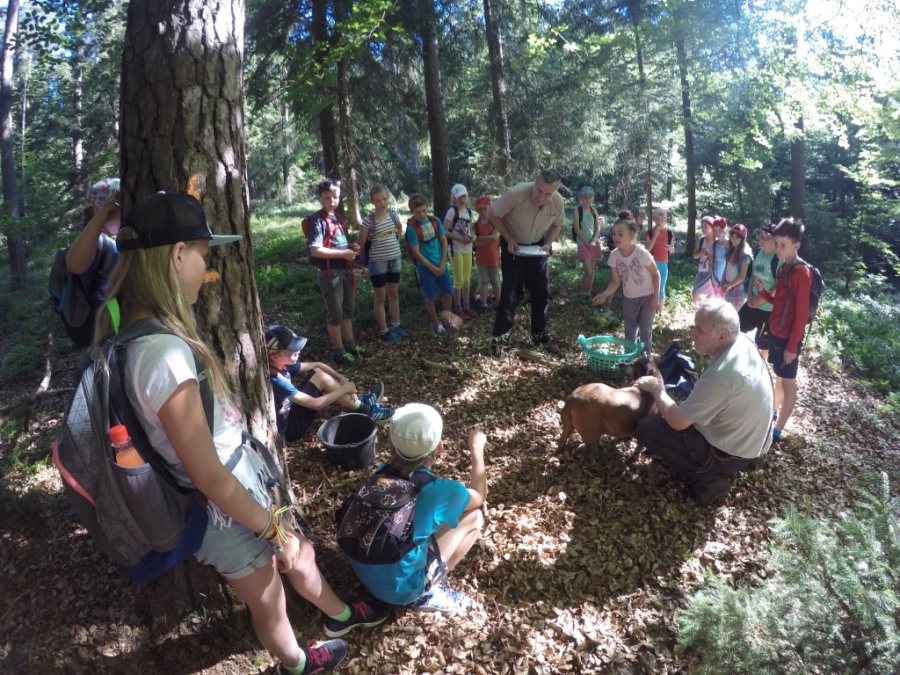 Kinderolympiade Expedition in den Wald