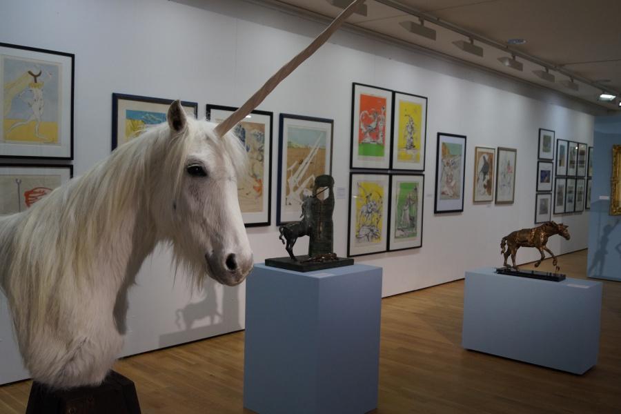 Blick in die Dalí-Ausstellung_a